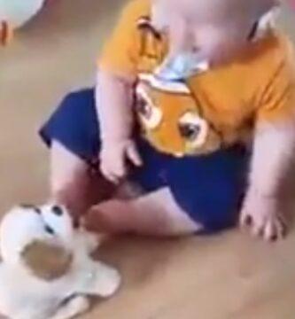 Bebe Riéndose Con Un Perro De Juguete