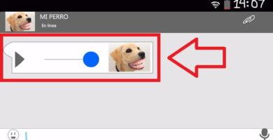 Cuando Tu Perro Tiene WhatsApp